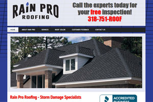 Web Development for Rain Pro Roofing